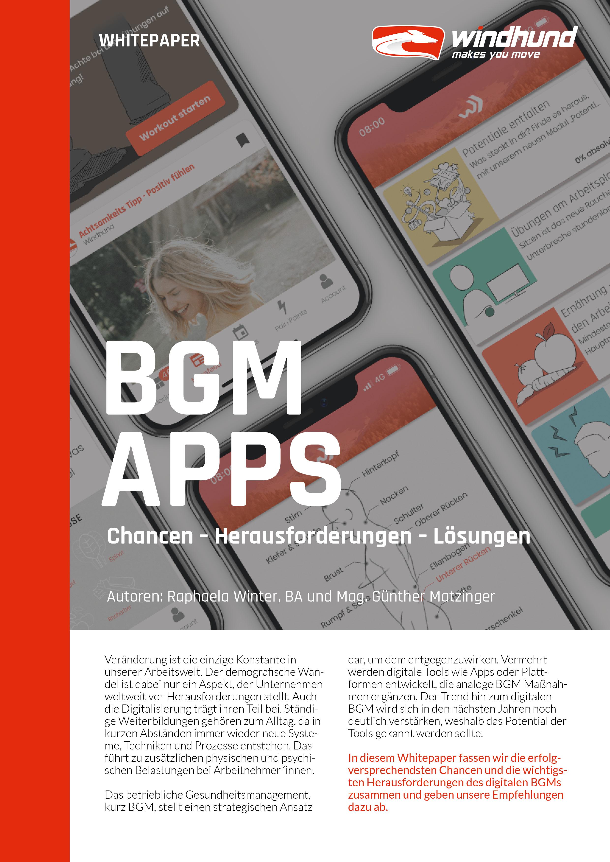 Windhund Whitepaper Chancen und Herausforderungen digitaler BGM Tools